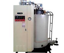 EI Dual Steam Boiler
