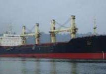 Vessel/ Bulk Carrier